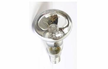 Reflector-Lamp
