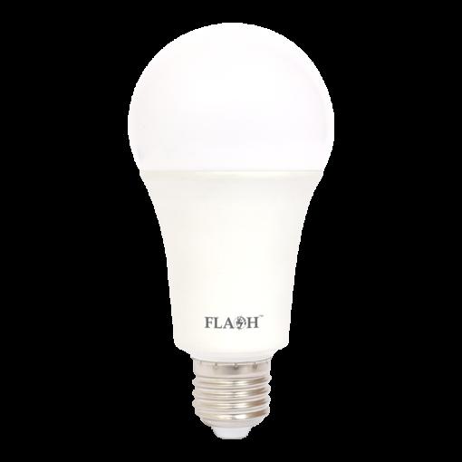 LED Lighting Lamp